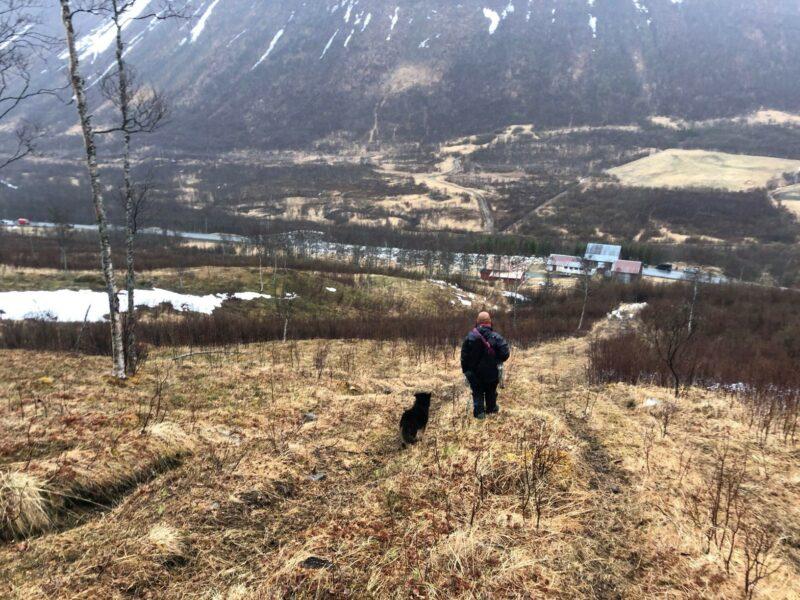 Bildet viser en mann og en hund som står med ryggen til kamera og ser nedover en dal på høsten