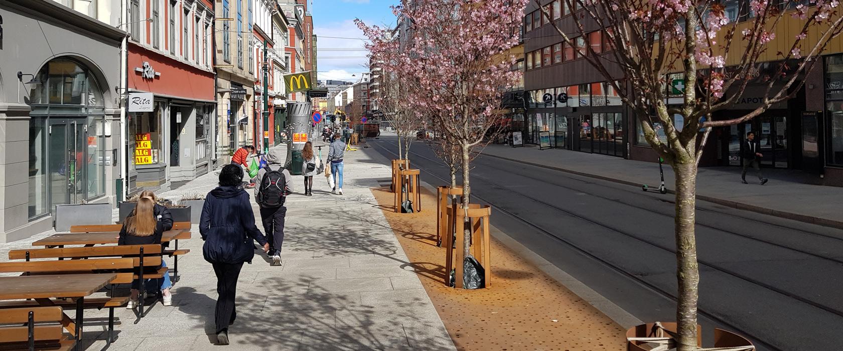 Storgata i Oslo. Fortau og folk som går, kirsebærtrær som blomstrer, trikkeskinner klar til bruk.